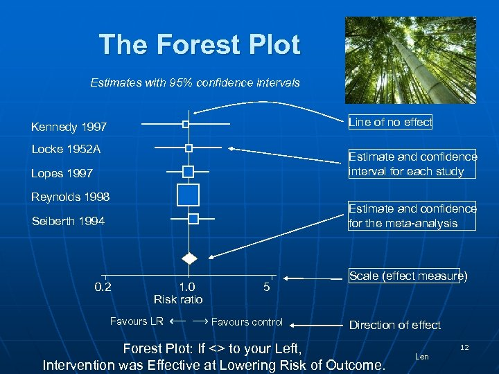 The Forest Plot Estimates with 95% confidence intervals Line of no effect Kennedy 1997