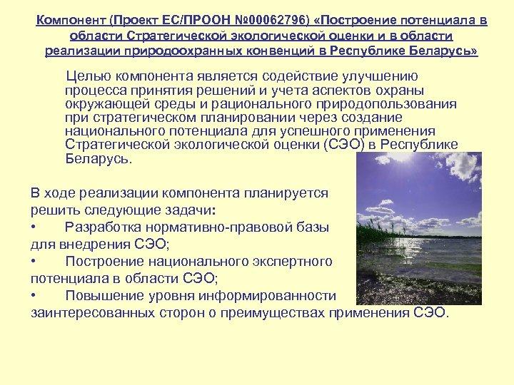 Компонент (Проект ЕС/ПРООН № 00062796) «Построение потенциала в области Стратегической экологической оценки и в