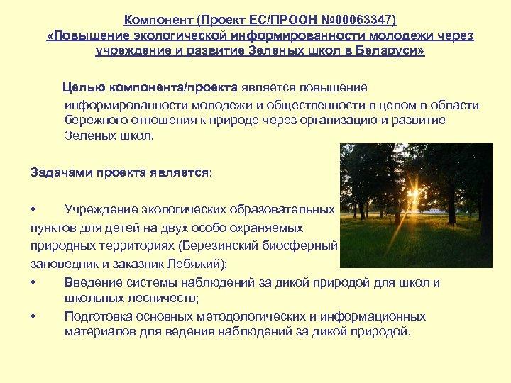 Компонент (Проект ЕС/ПРООН № 00063347) «Повышение экологической информированности молодежи через учреждение и развитие Зеленых