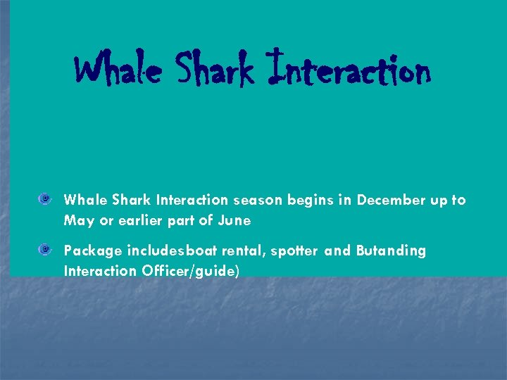 Whale Shark Interaction season begins in December up to May or earlier part of