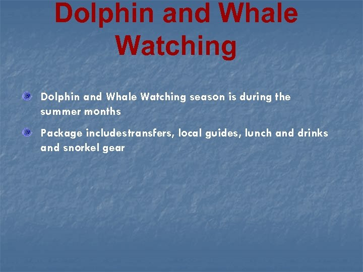 Dolphin and Whale Watching season is during the summer months Package includestransfers, local guides,