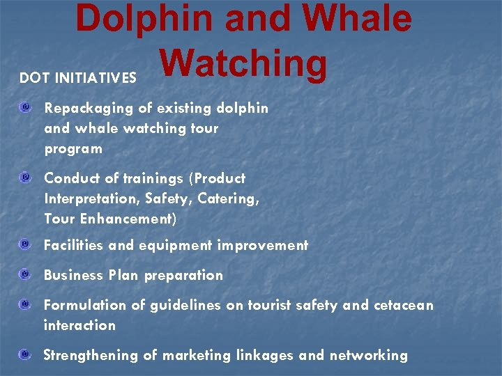 Dolphin and Whale DOT INITIATIVES Watching Repackaging of existing dolphin and whale watching tour