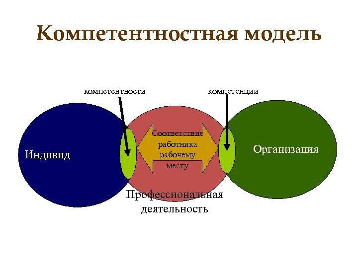 Компетентностная модель компетентности Индивид компетенции Соответствие работника рабочему месту Профессиональная деятельность Организация