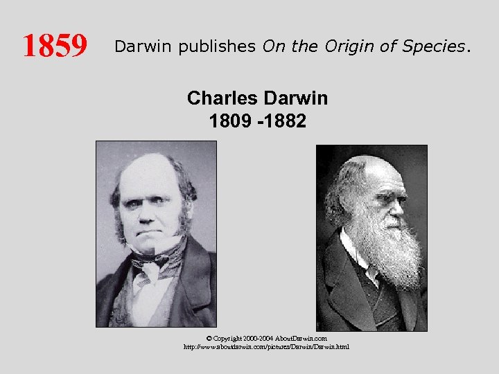 1859 Darwin publishes On the Origin of Species. Charles Darwin 1809 -1882 © Copyright