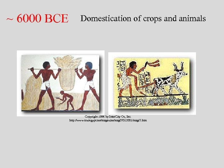 ~ 6000 BCE Domestication of crops and animals Copyright 1996 by Inter. City Oz,