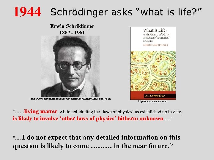 "1944 Schrödinger asks ""what is life? "" Erwin Schrödinger 1887 - 1961 http: //www-groups."