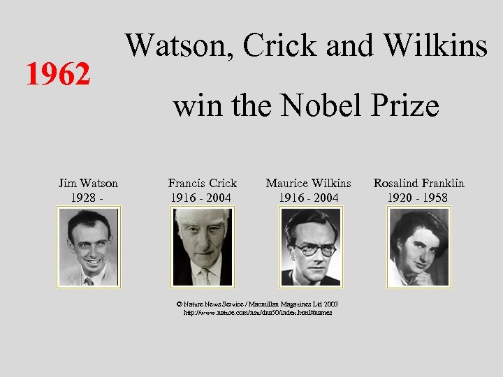 1962 Jim Watson 1928 - Watson, Crick and Wilkins win the Nobel Prize Francis