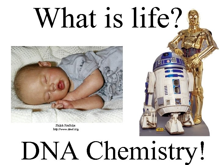 What is life? Shiloh Pitt/Jolie http: //www. sawf. org DNA Chemistry!
