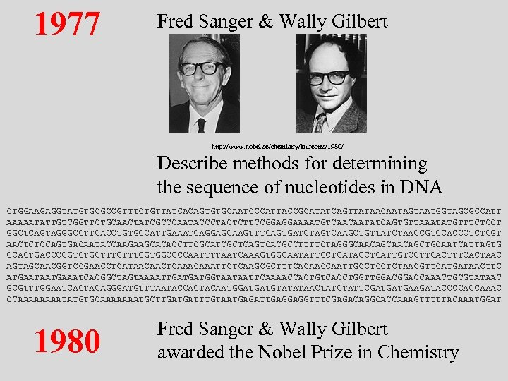 1977 Fred Sanger & Wally Gilbert http: //www. nobel. se/chemistry/laureates/1980/ Describe methods for determining