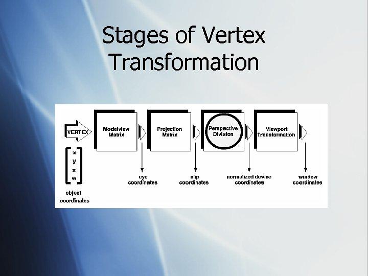 Stages of Vertex Transformation