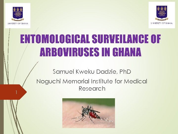 ENTOMOLOGICAL SURVEILANCE OF ARBOVIRUSES IN GHANA Samuel Kweku Dadzie, Ph. D 1 Noguchi Memorial