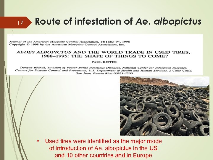 17 Route of infestation of Ae. albopictus • Used tires were identified as the