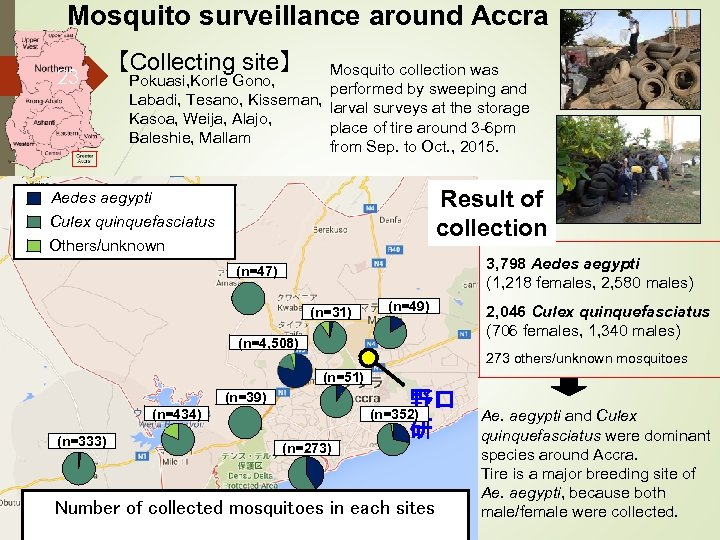Mosquito surveillance around Accra 23 【Collecting site】 Mosquito collection was Pokuasi, Korle Gono, performed