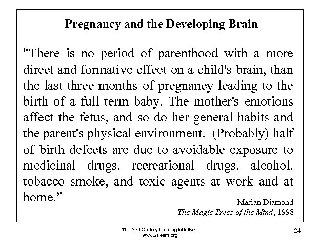 Pregnancy and the Developing Brain