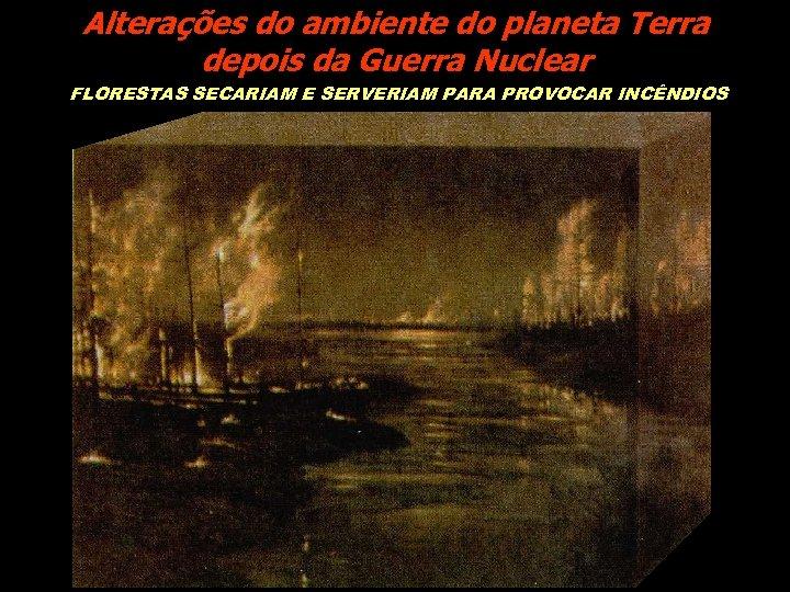 Alterações do ambiente do planeta Terra depois da Guerra Nuclear FLORESTAS SECARIAM E SERVERIAM