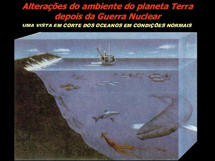 Alterações do ambiente do planeta Terra depois da Guerra Nuclear UMA VISTA EM CORTE