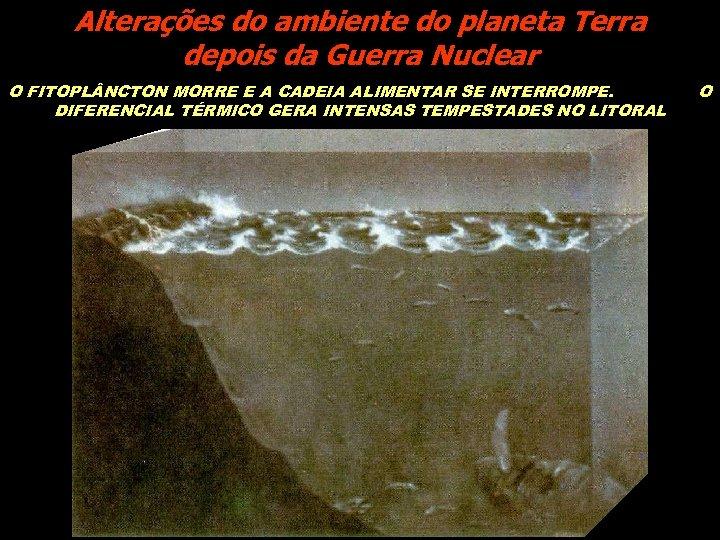 Alterações do ambiente do planeta Terra depois da Guerra Nuclear O FITOPL NCTON MORRE