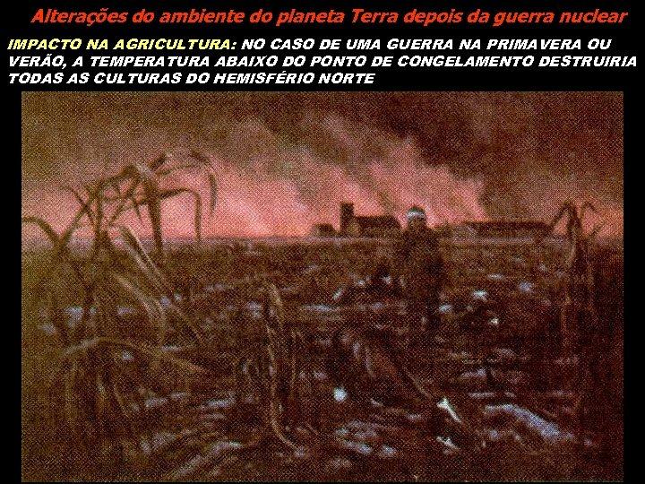 Alterações do ambiente do planeta Terra depois da guerra nuclear IMPACTO NA AGRICULTURA: NO