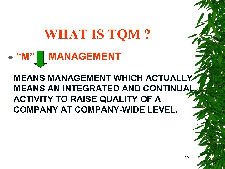 """WHAT IS TQM ? """"M"""" MANAGEMENT MEANS MANAGEMENT WHICH ACTUALLY MEANS AN INTEGRATED AND"""