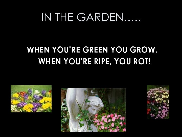 IN THE GARDEN…. . WHEN YOU'RE GREEN YOU GROW, WHEN YOU'RE RIPE, YOU ROT!