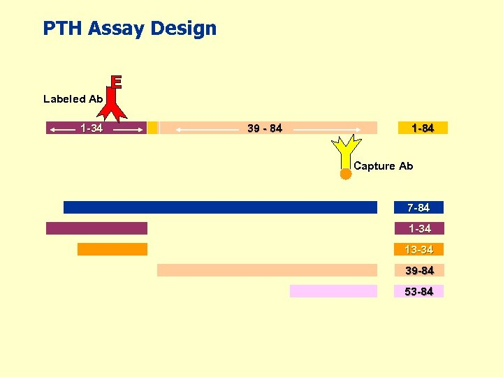 PTH Assay Design Labeled Ab 1 -34 39 - 84 1 -84 Capture Ab