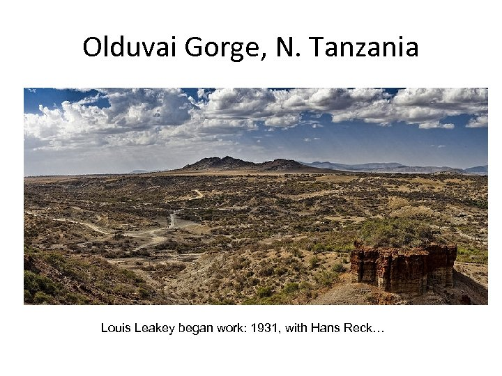 Olduvai Gorge, N. Tanzania Louis Leakey began work: 1931, with Hans Reck…