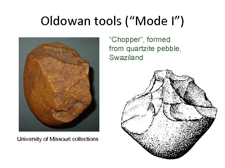 "Oldowan tools (""Mode I"") ""Chopper"", formed from quartzite pebble, Swaziland University of Missouri collections"