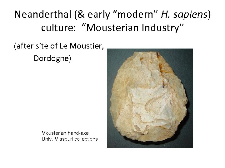 "Neanderthal (& early ""modern"" H. sapiens) culture: ""Mousterian Industry"" (after site of Le Moustier,"