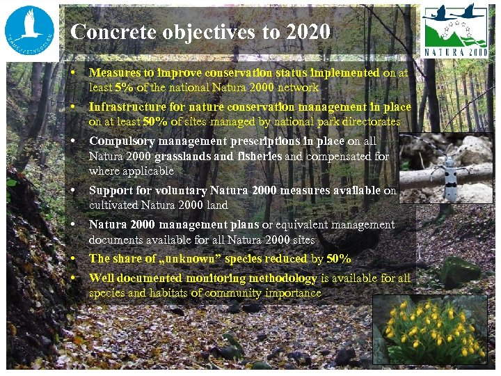 Concrete objectives to 2020 • Measures to improve conservation status implemented on at least