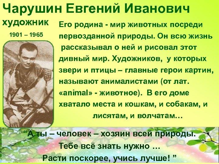 Чарушин Евгений Иванович художник 1901 – 1965 Его родина - мир животных посреди первозданной