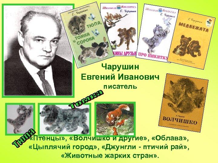 Чарушин Евгений Иванович писатель «Птенцы» , «Волчишко и другие» , «Облава» , «Цыплячий город»