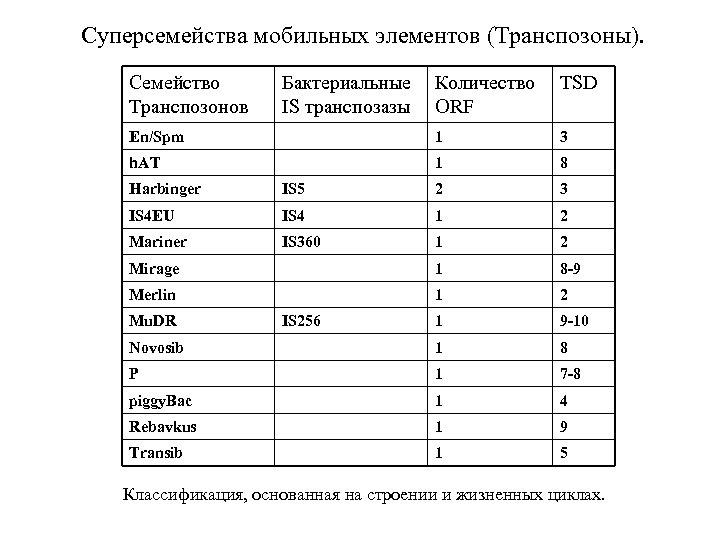 Суперсемейства мобильных элементов (Транспозоны). Семейство Транспозонов Бактериальные IS транспозазы Количество ORF TSD En/Spm 1