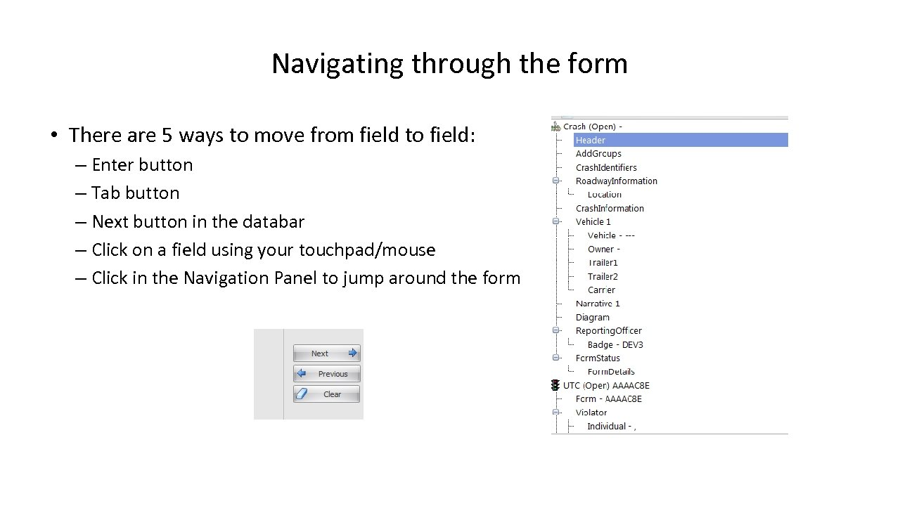Navigating through the form • There are 5 ways to move from field to