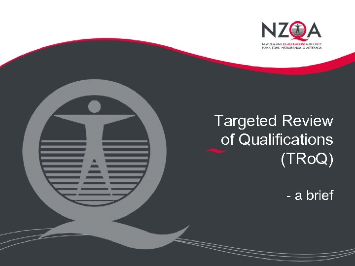 Targeted Review of Qualifications (TRo. Q) - a brief