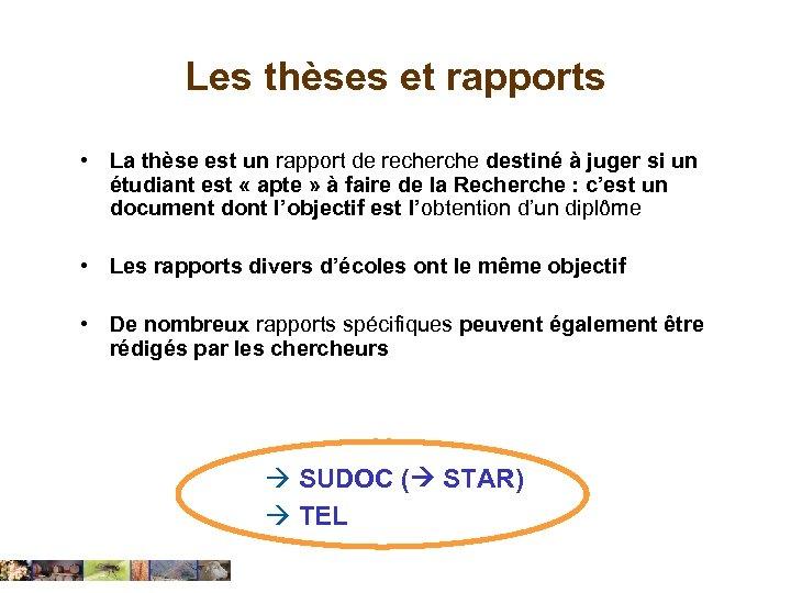 Les thèses et rapports • La thèse est un rapport de recherche destiné à