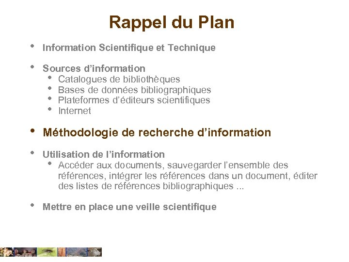 Rappel du Plan • Information Scientifique et Technique • Sources d'information • Catalogues de