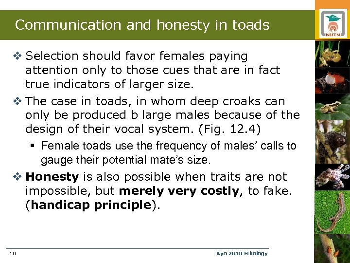 Communication and honesty in toads v Selection should favor females paying attention only to