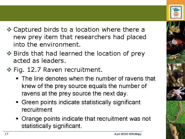 v Captured birds to a location where there a new prey item that researchers