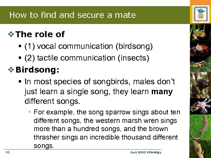 How to find and secure a mate v The role of § (1) vocal
