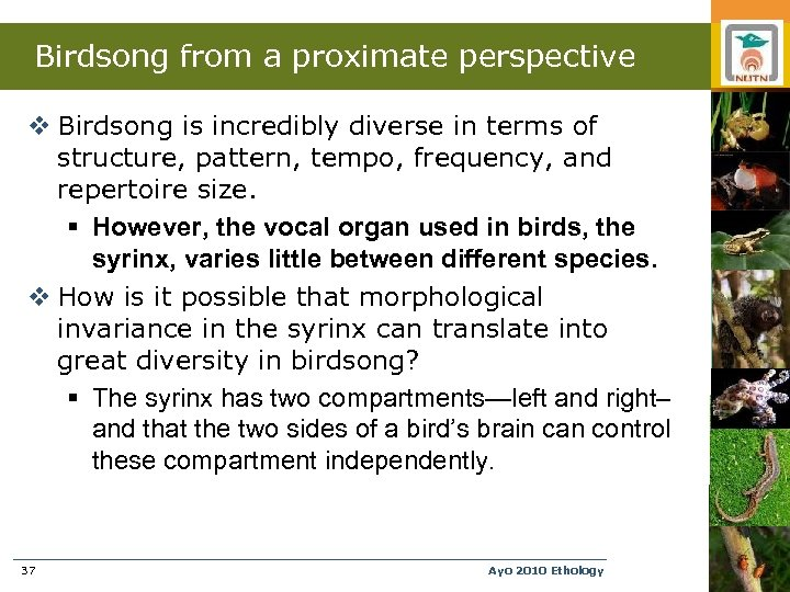 Birdsong from a proximate perspective v Birdsong is incredibly diverse in terms of structure,