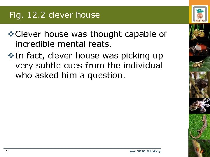Fig. 12. 2 clever house v Clever house was thought capable of incredible mental