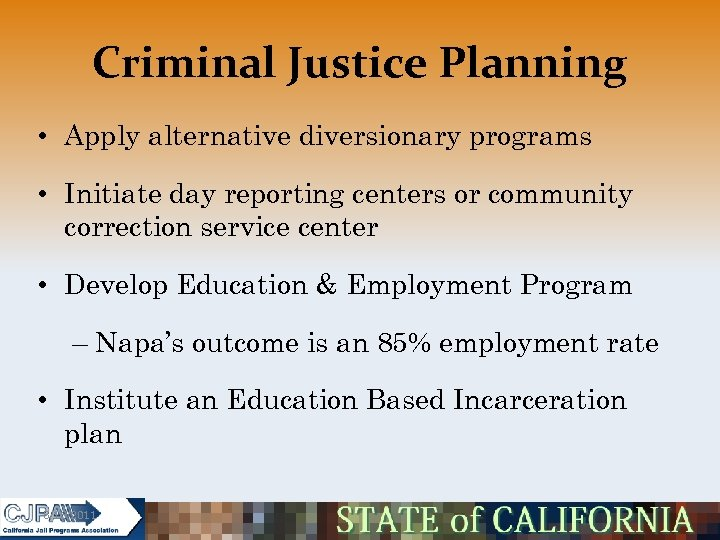 Criminal Justice Planning • Apply alternative diversionary programs • Initiate day reporting centers or