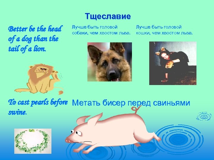 Тщеславие Better be the head of a dog than the tail of a lion.