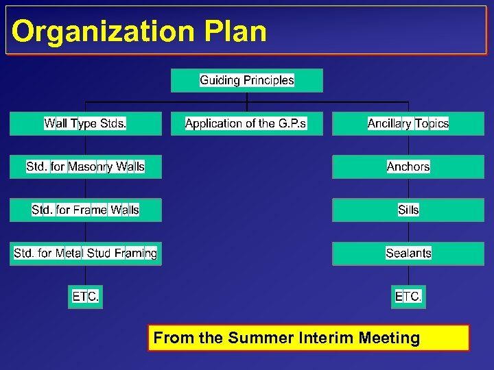 Organization Plan From the Summer Interim Meeting