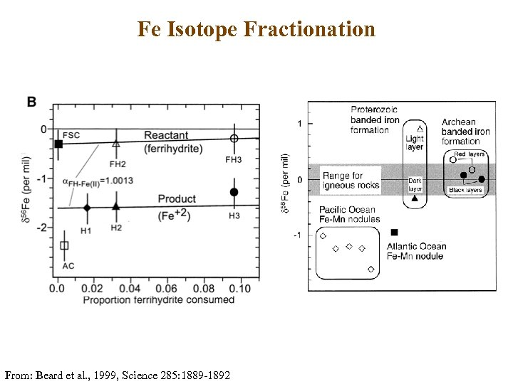 Fe Isotope Fractionation From: Beard et al. , 1999, Science 285: 1889 -1892