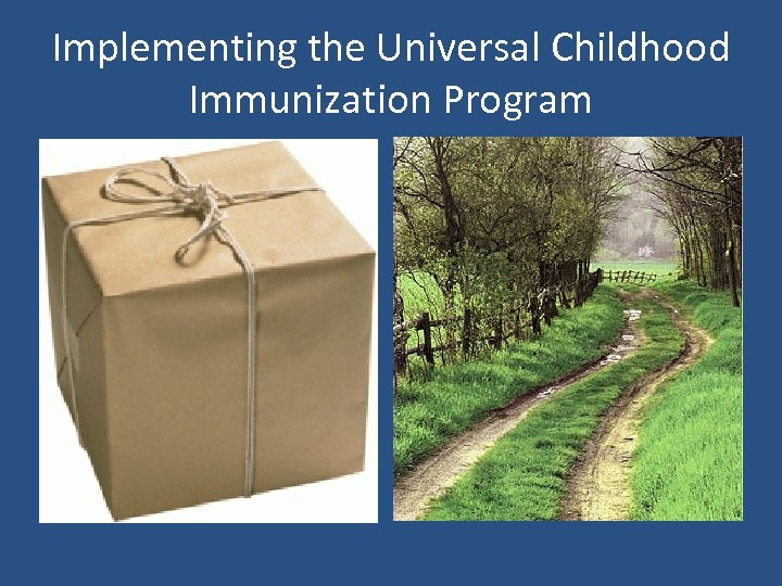 Implementing the Universal Childhood Immunization Program