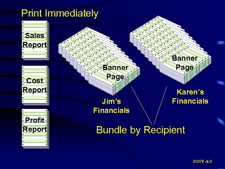 Print Immediately Sales Report Cost Report Banner Page Jim's Financials Profit Report Banner Page