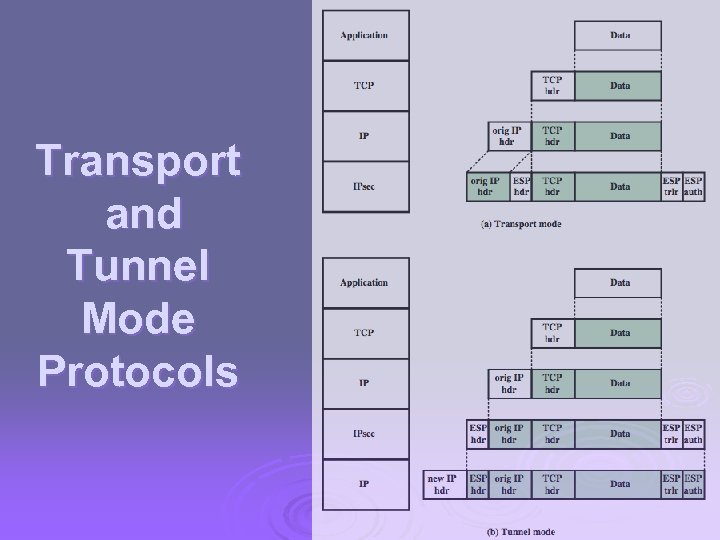 Transport and Tunnel Mode Protocols