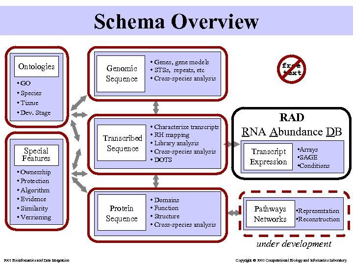 Schema Overview Ontologies • GO • Species • Tissue • Dev. Stage Special Features