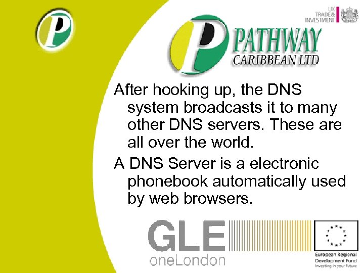 After hooking up, the DNS system broadcasts it to many other DNS servers. These